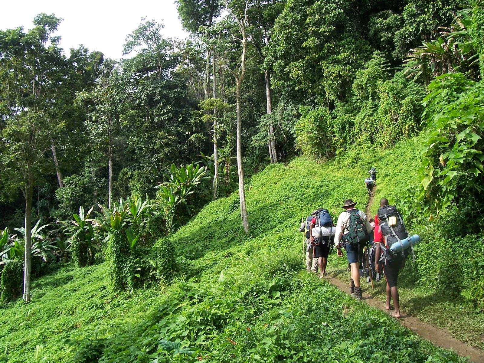 Kokoda Patikası, Papua Yeni Gine