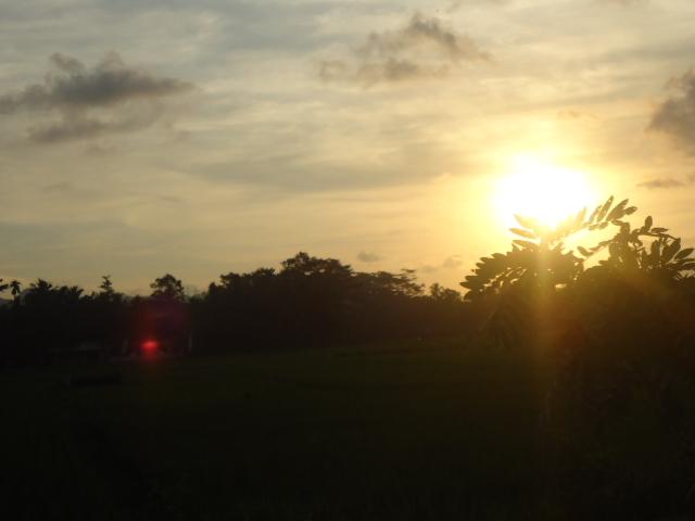 Cerahnya Sinar Matahari di Sore hari