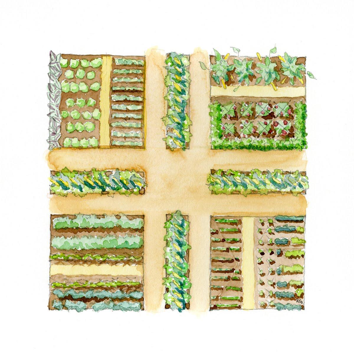 soil before seeds