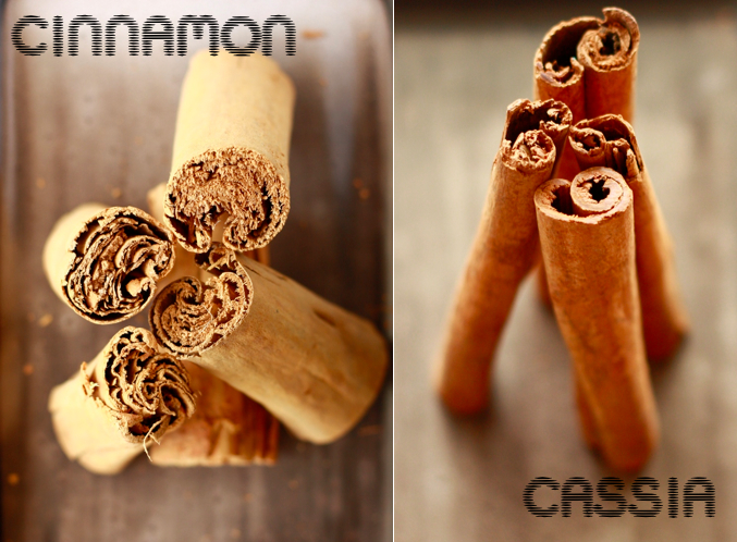 Difference between cinnamon and cassia by SeasonWithSpice.com