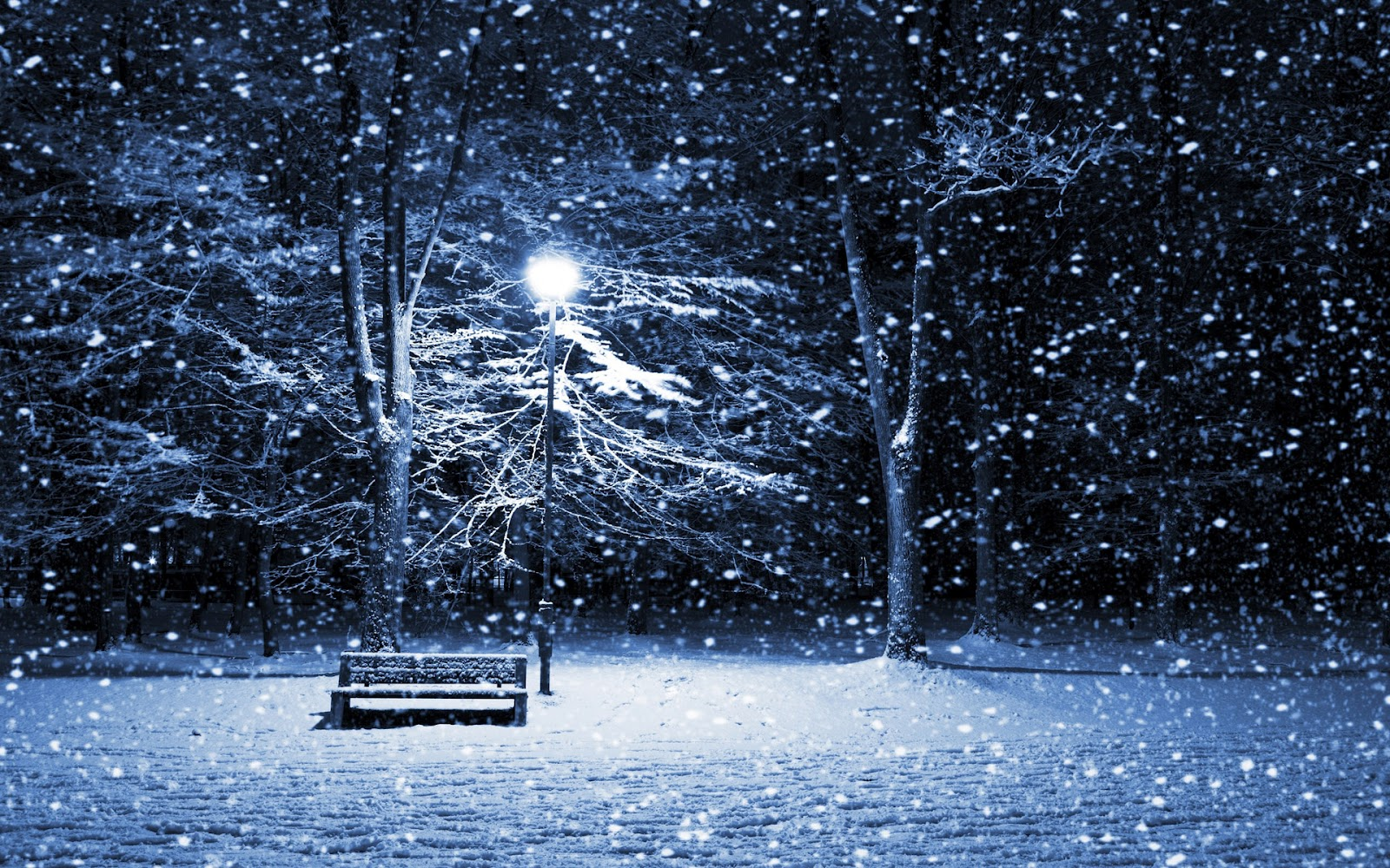 Winter Wallpaper Backgrounds Widescreen