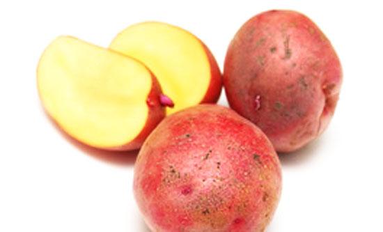 Sweet Potato Baby food recipes