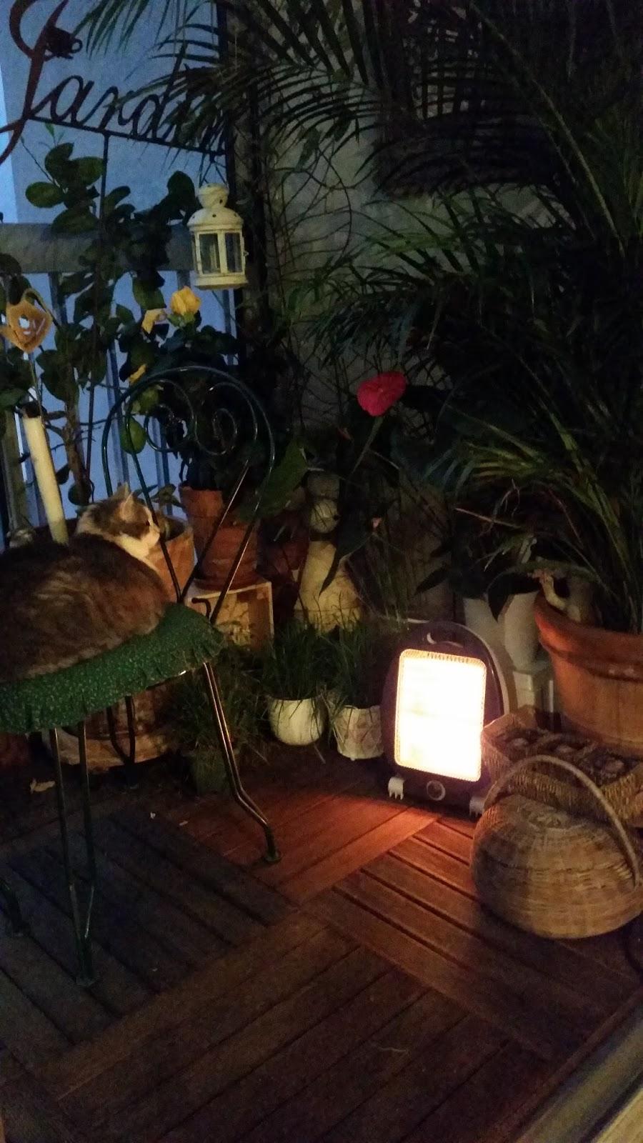 Les spa de chipie fleurs en pots bloc 4 for Le jardin de woolens