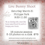 Easter Bunny Pictures! Please call or email for a slot. bunnysession
