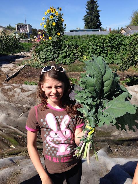 holding a bunch of kale grassroots garden eugene oregon