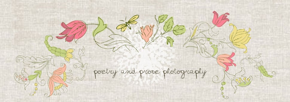 Poetry and Prose Photography