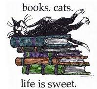 El rey de los gatos y los libros