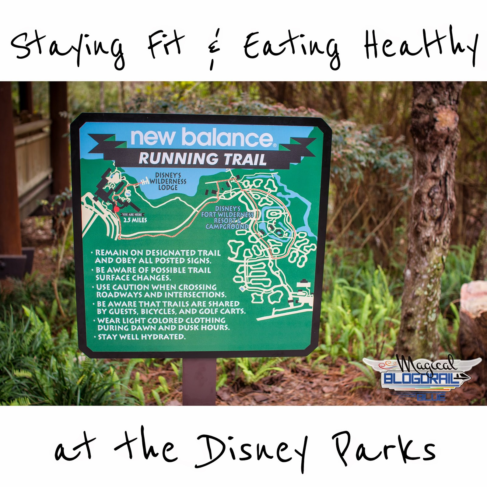 Staying Fit & Eating Healthy at the Disney Parks