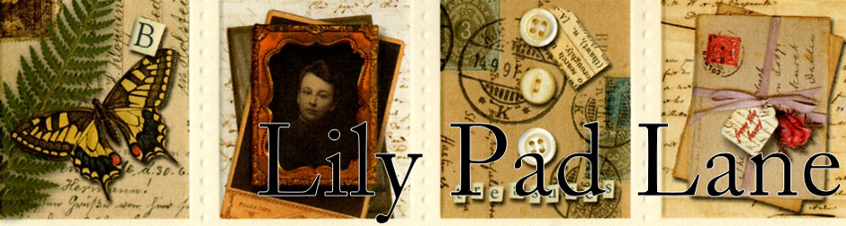Lily Pad Lane