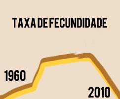 Taxa de fecundidade