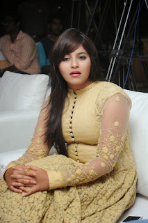 Actress Anjali Latest Pictures in Long Dress=at Geethanjali Success meet 33)
