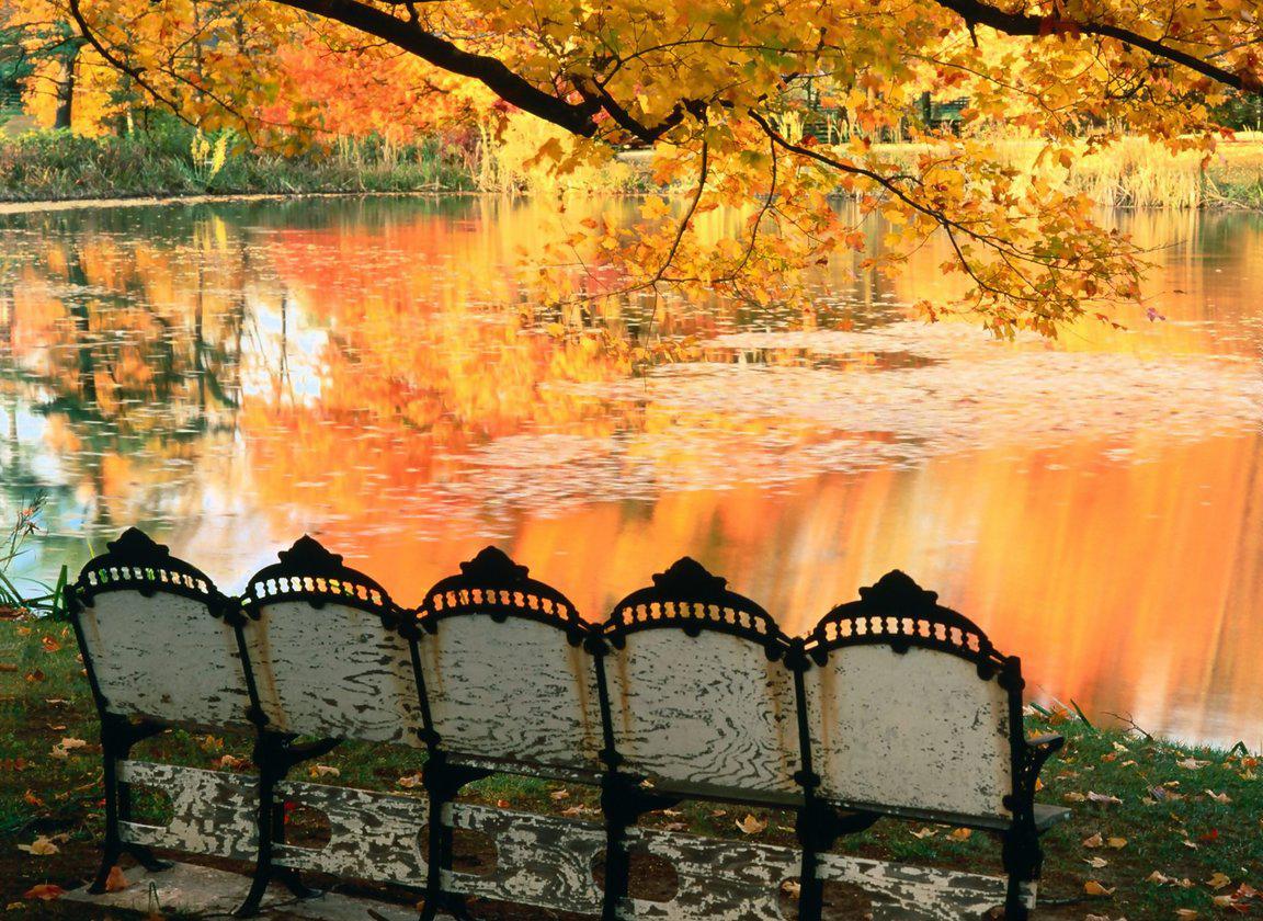 http://4.bp.blogspot.com/-D65rgOFO2HM/T9hsKqyZLiI/AAAAAAAAEEM/YzFd3Ud4pkU/s1600/nature+wallpaper+(15).jpg