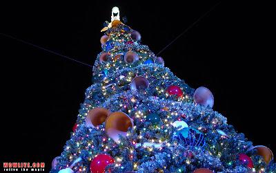 http://4.bp.blogspot.com/-D66-gvw9Blw/Tlf-_Kt3HoI/AAAAAAAAAbY/nqaUi599pdM/s400/184_epcot_xmas_tree.jpg