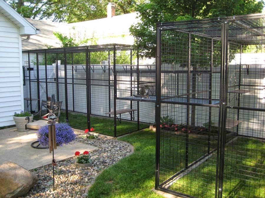 Backyard Enclosures For Cats : Cat Lucky Outdoor Cat Cages  Keep Your Pet Safe