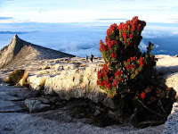 Best Honeymoon Destinations In Asia - Kinabalu, Malaysia
