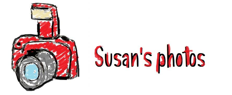 Susana's photos