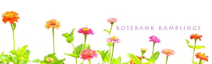rosebank ramblings