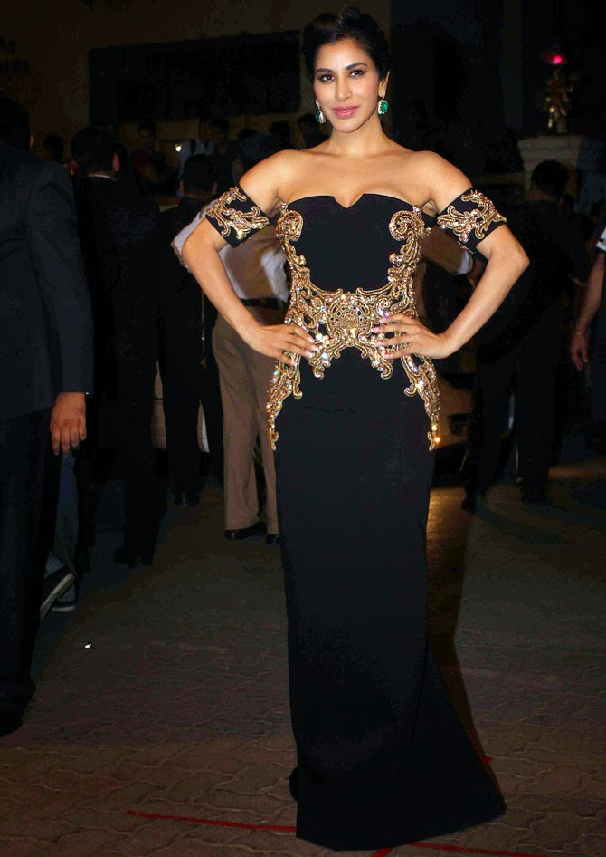 Best Dressed Celebrity's from The Filmfare Awards 2015 | Sophie Chroudry