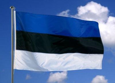флаг Эстонии небо