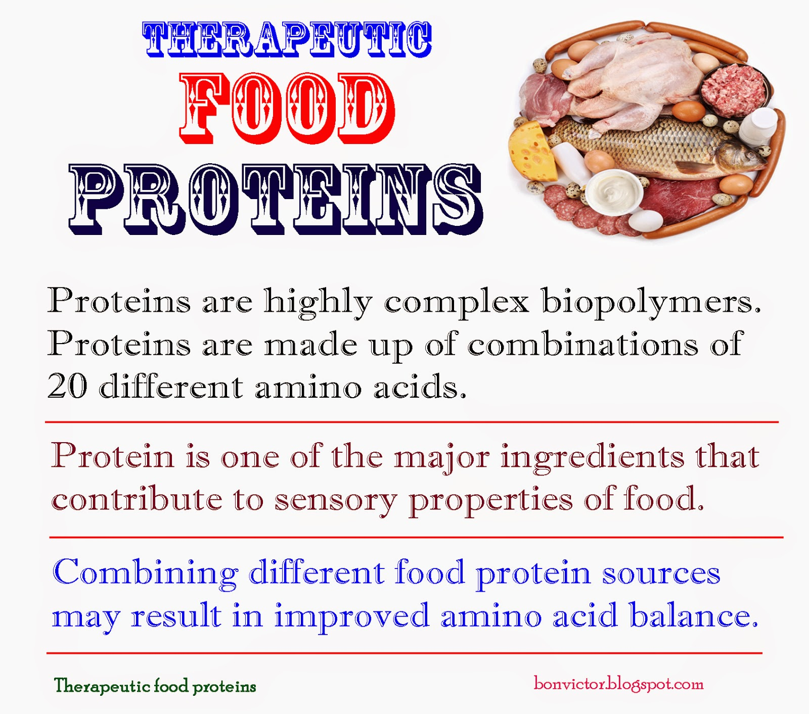 Which Vegetables Contain Protein Bonvictorspot therapeutic food proteins bonvictorspot workwithnaturefo