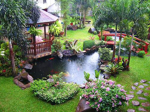 To Tropical Garden Design.