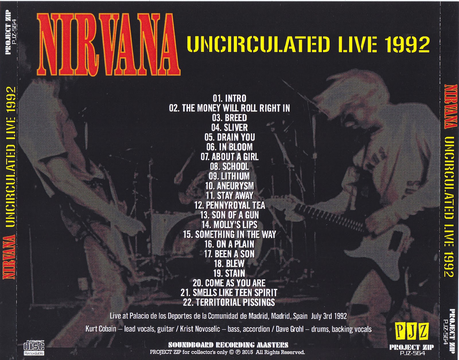 an introduction to the history of nirvana