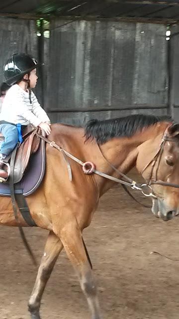Bogotá com crianças aula de equitação clases de equitación Colombia