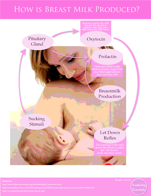 how is breast milk produced