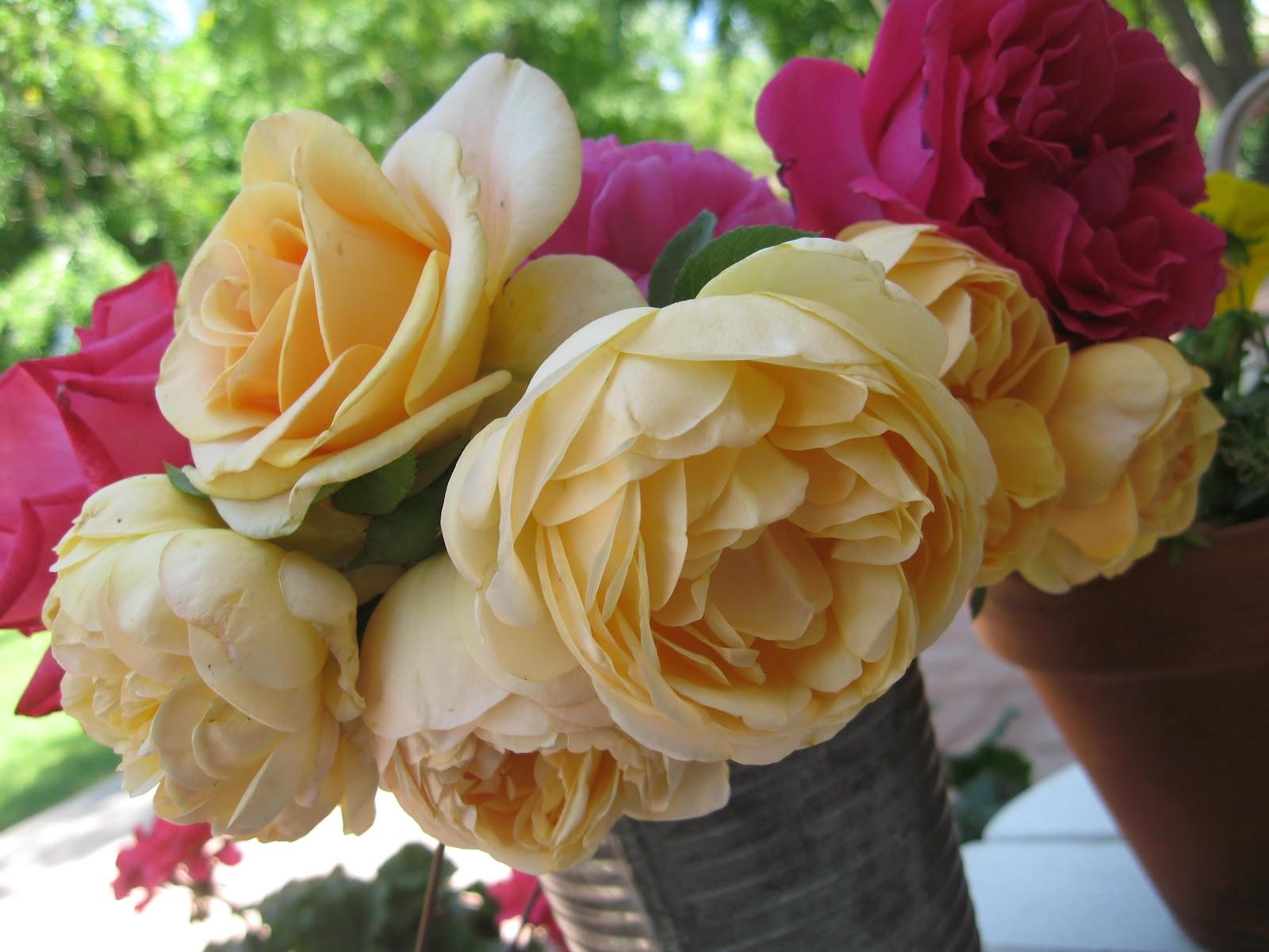 Sweet Life Garden: You are invited to the 2012 Spring Edible Garden ...