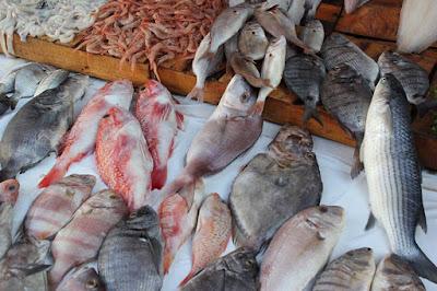 فوائد السمك الغذائية و الصحية في شهر رمضان