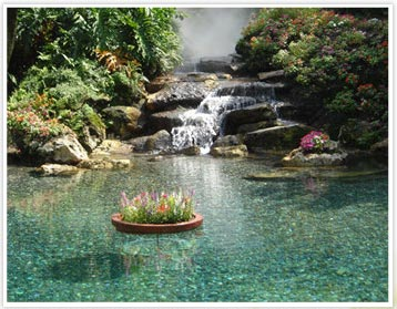 Waterscapes inspired exterior design home design ideas for Waterscape garden designs