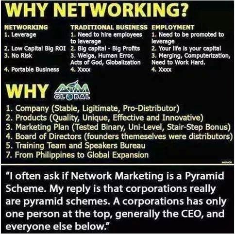 difrence between networking traditional business and employment