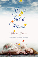 Book cover of Life Is But a Dream by Brian James