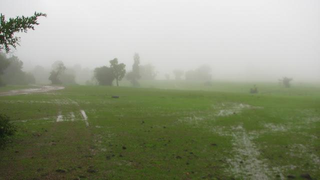 A rainy day, Agumbe