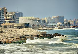 السد العالى والاحتباس الحراري وراء اختفاء عروس البحر المتوسط
