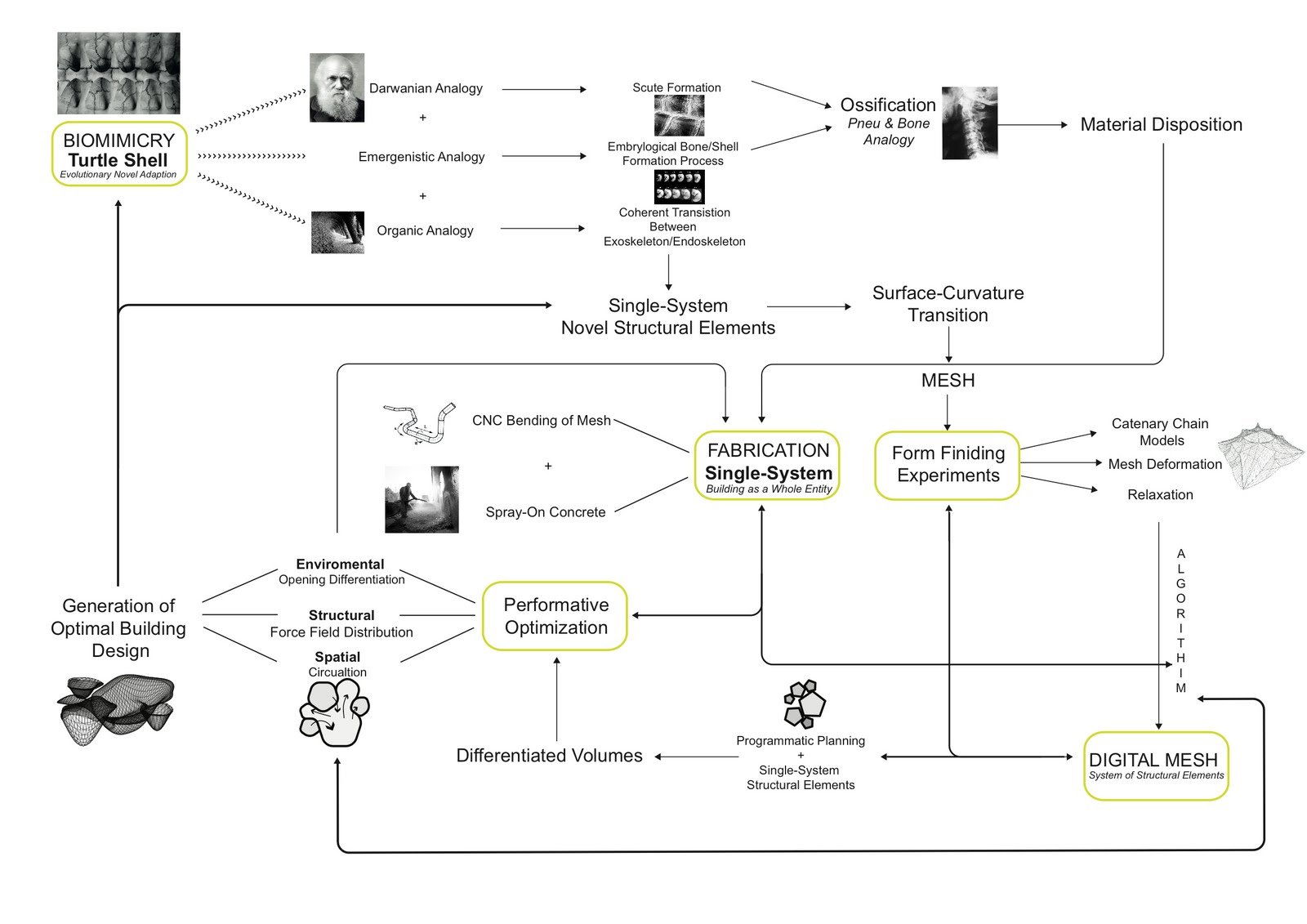 Phd Dissertation Timeline