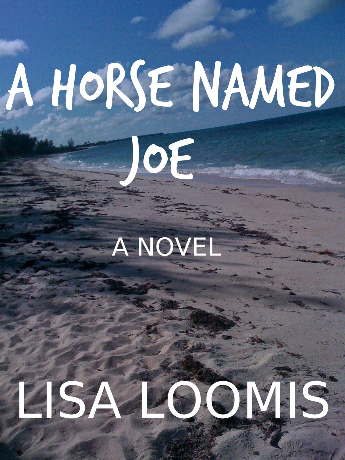 Books by Lisa Loomis
