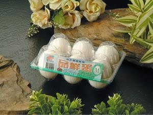 Khay nhựa đựng trứng 10