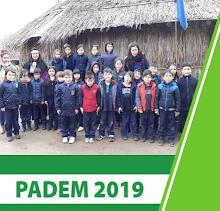 PADEM 2019