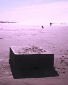 Clyde Lewis to investigate metal boxes on Oregon beaches
