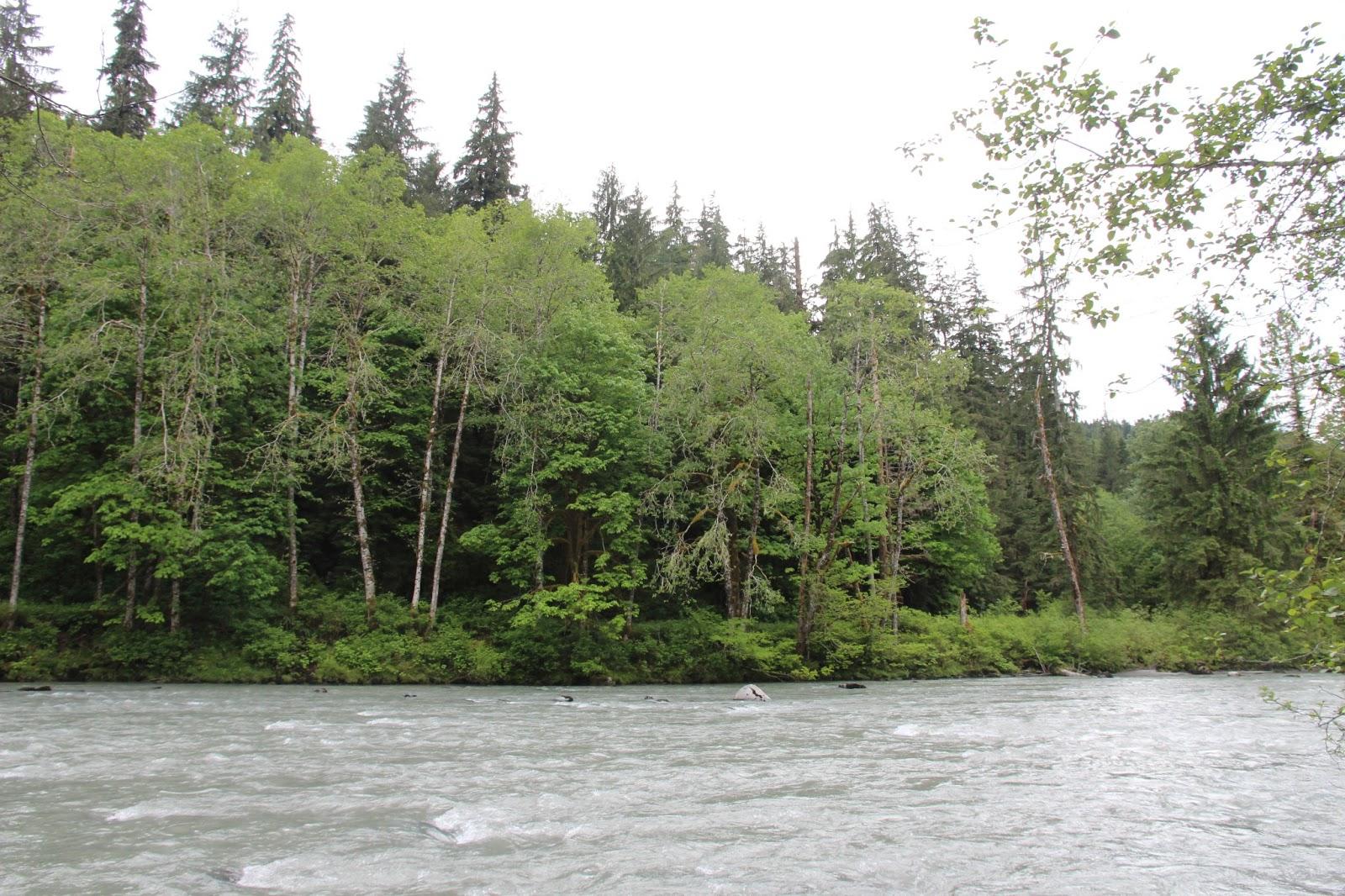 Explorations of Jackie & Joe: Verlot Campground & Lake 22