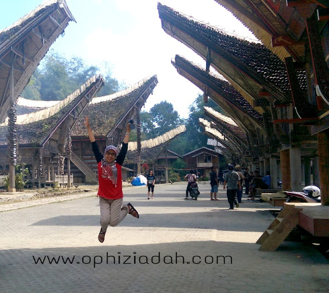 tana toraja, travelling, indonesia