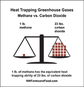 A visualization of the dangerous trapping ability of methane gas