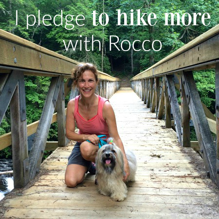 rocco Havanese and Diane Hiking dogs