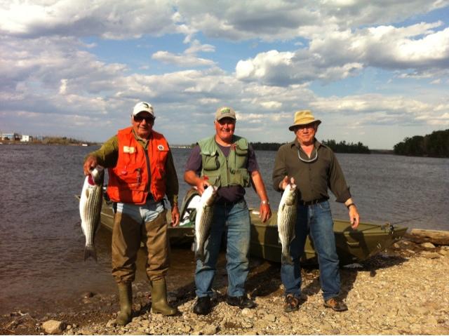 Rod 39 s miramichi fishing reports stripe bass on the miramichi for Local fishing reports