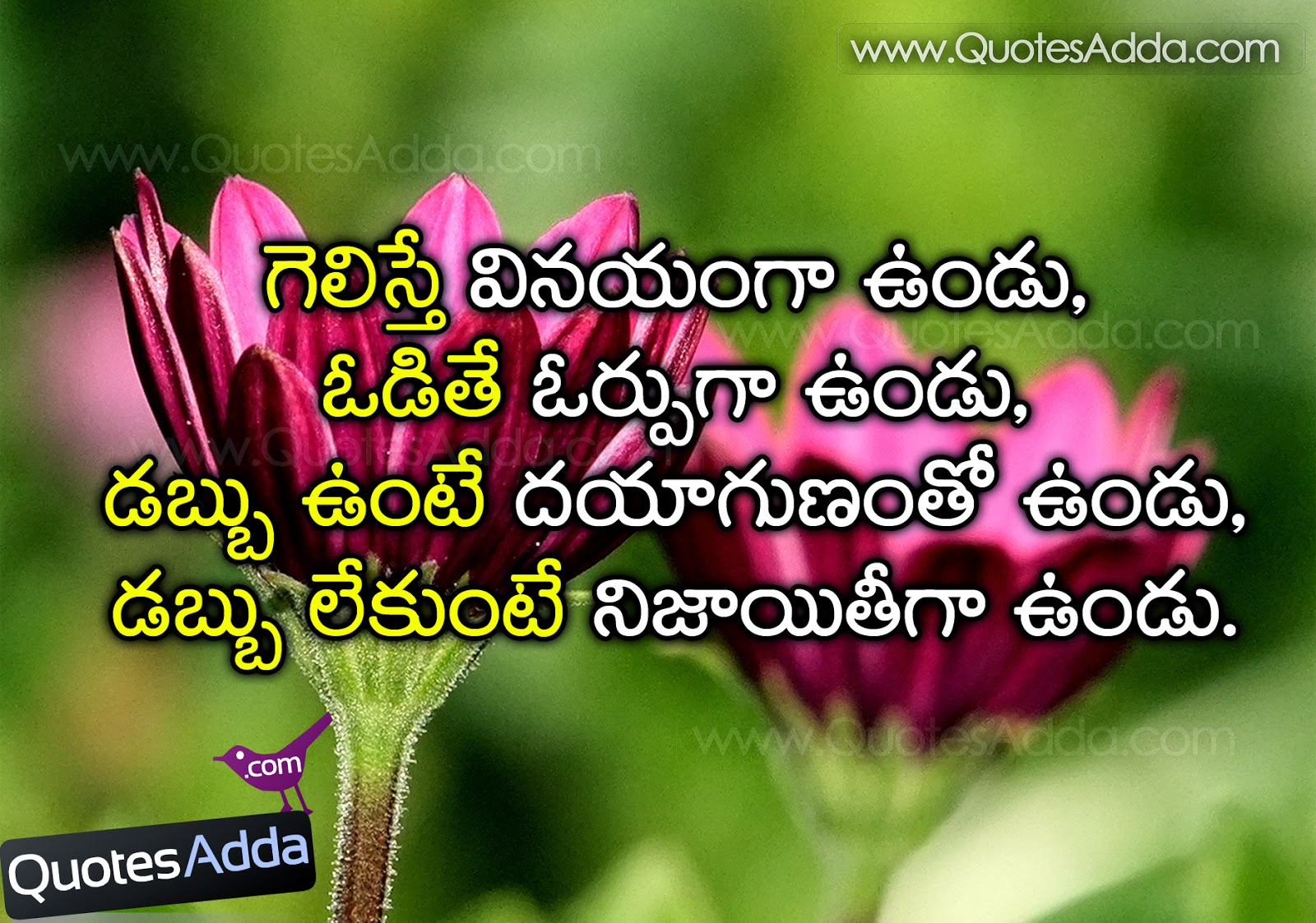Good Quotes About Life And Love And Friendship Telugunicelifequotationsforlearnersjun05Quotesadda