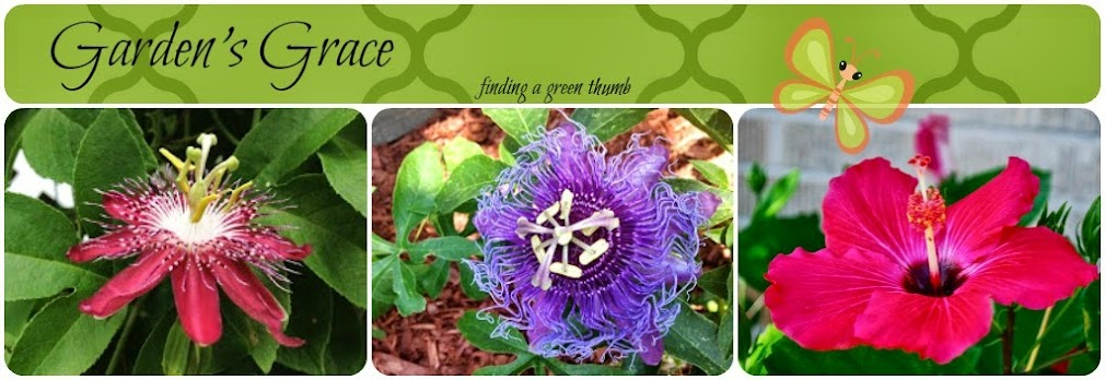 Garden's Grace