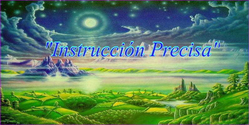 """""""Instrucción Precisa"""""""