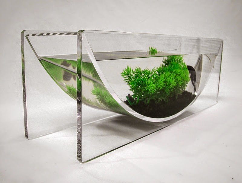 modern fish tanks