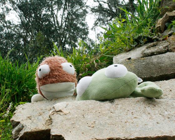 Colchón  y Culito Rana apoyados en una piedra